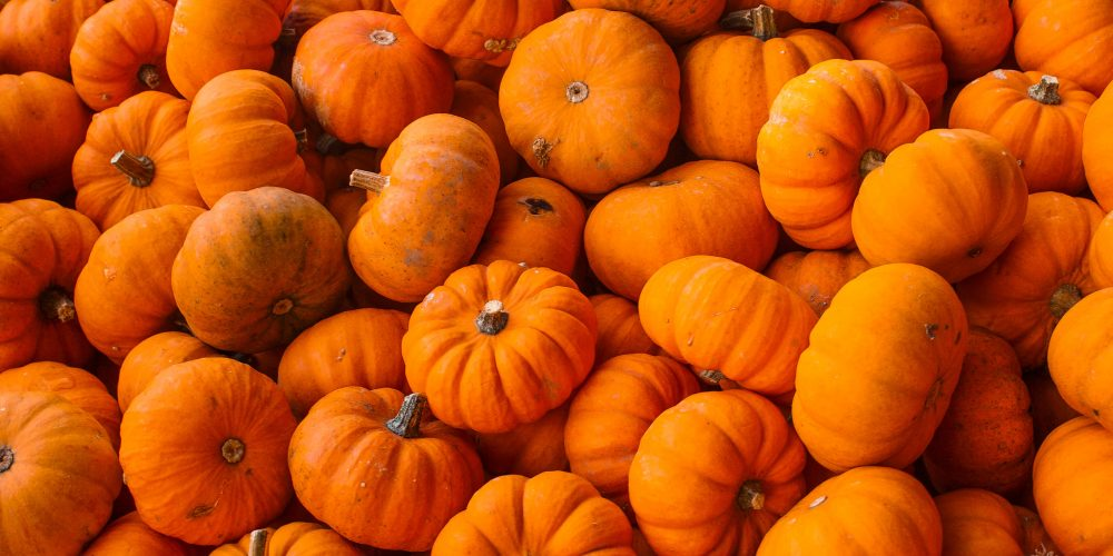 A pile of orange pumpkins in october related to things to do in Boston on an Off The Beaten Path Food Tour